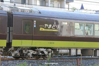 190806_485yamadori3.jpg