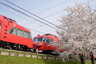 大山寺〜徳重の桜と名鉄電車