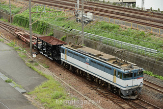 E7E85C5E-92D9-4419-A10C-9623BCCE9748.jpeg